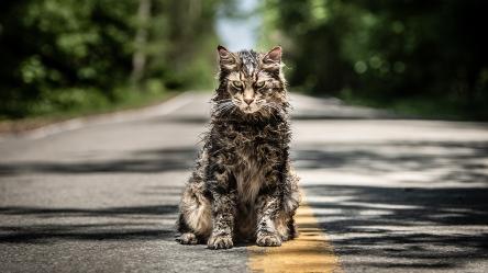 Horror Films Coming 2019 - Pet Sematary