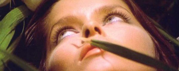 Short Night of Glass Dolls giallo horror film